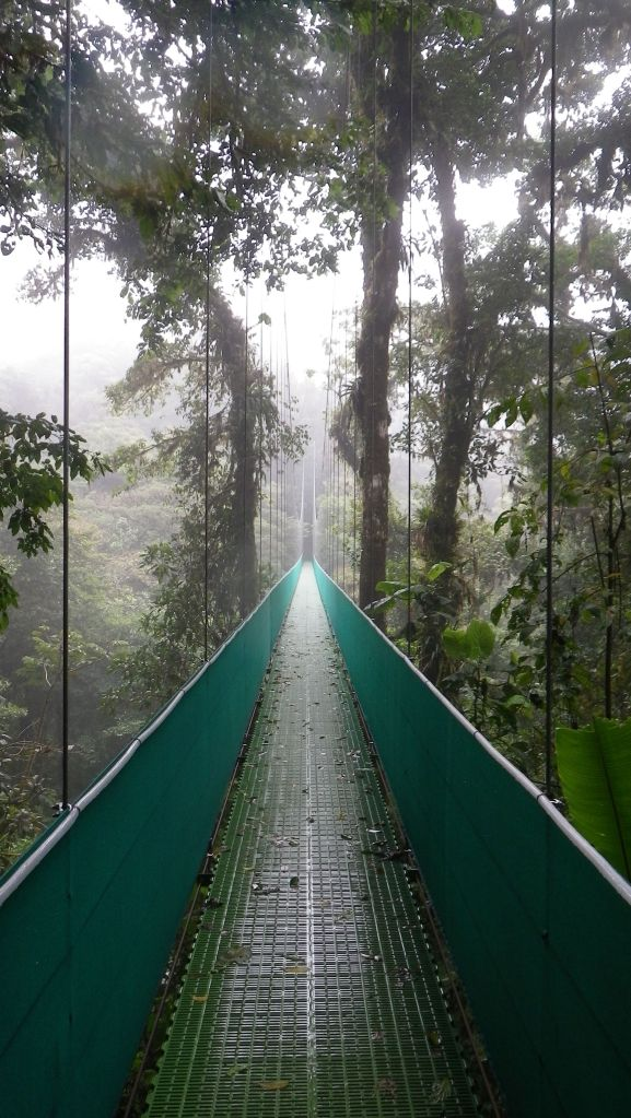 Hanging bridges trek