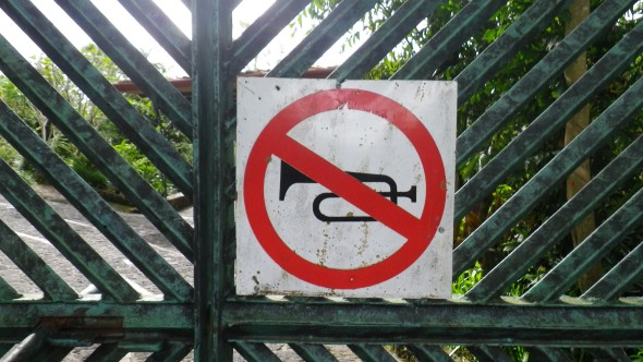 Absolutely no trumpeting