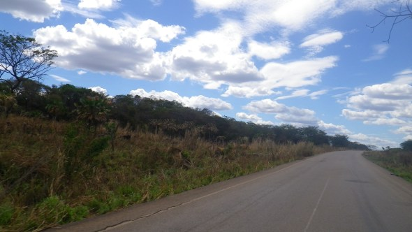 Brilliant skies in the Venezuelan plains