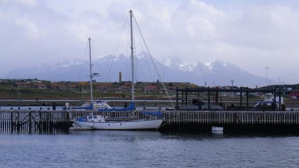 IMGP5919
